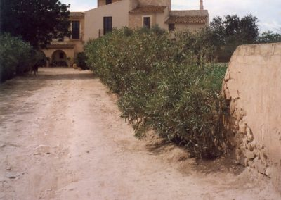 Torre-Juana-1997 (12)