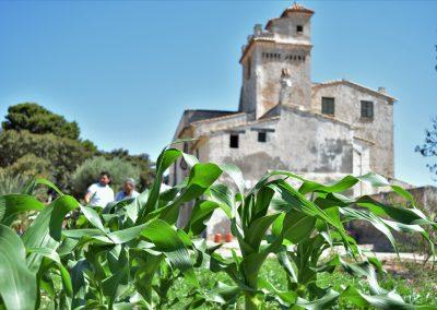 Torre-Juana-Gracia-Cid (39)