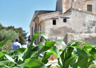 Torre-Juana-Gracia-Cid (41)