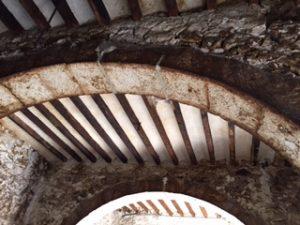 bodega-tj-arcos (2)