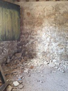 tj-bodega (4)