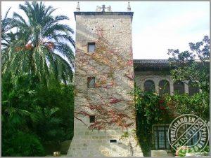 Torre Nicolau (Plinthus)