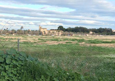 nacho-alcalde-torre-juana-4